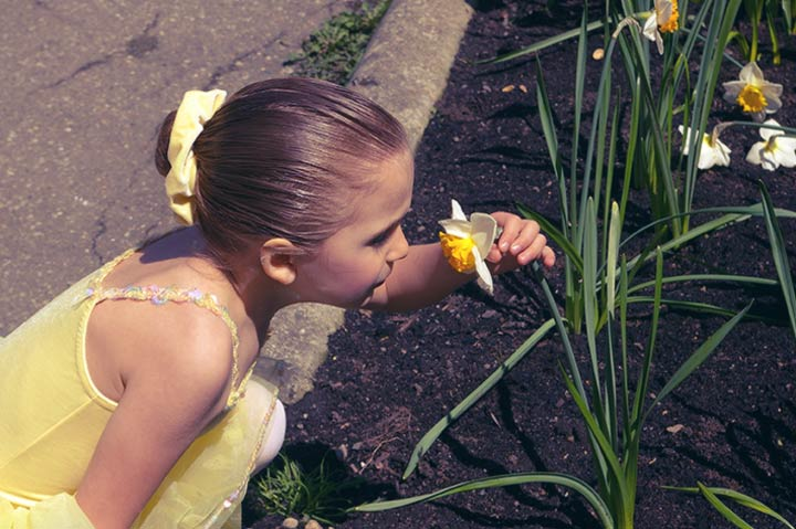 Taste, Touch & Smell--Yes, Your Kid Can Now Tell!