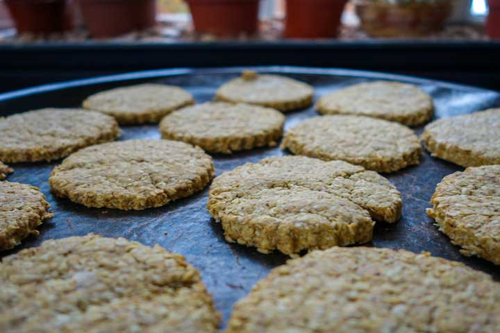 Power Packed Orangy Oat Buiscuits