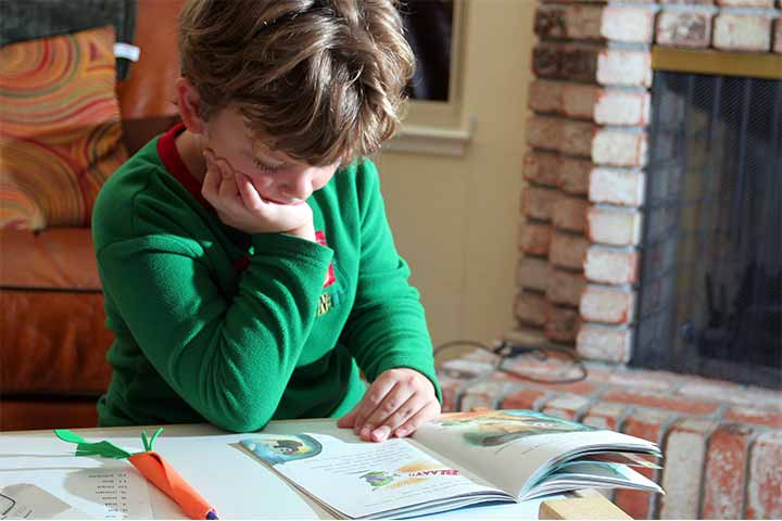 Your First Grader Now Needs A Reading Books-Selection Criteria