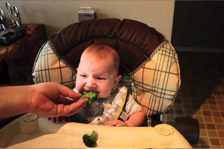 Your Child Is Ready To Change From Baby To Table Foods