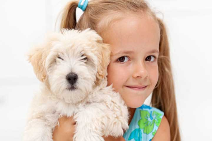 Your Kid Is Now Ready To Embrace The Love Of Pets!
