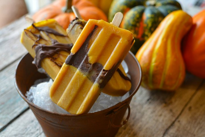 Pumpkin Chocolate Popsicles