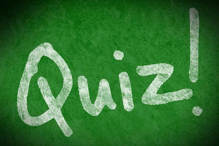 Your Child Can Now Attempt Short Written Quizzes That Involves Answering With Reasoning